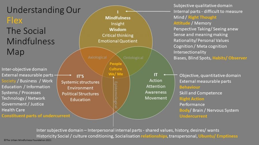 Mindfulness Based Inclusion Training - Social Mindfulness Map - Outer more flexible elements of experience awareness